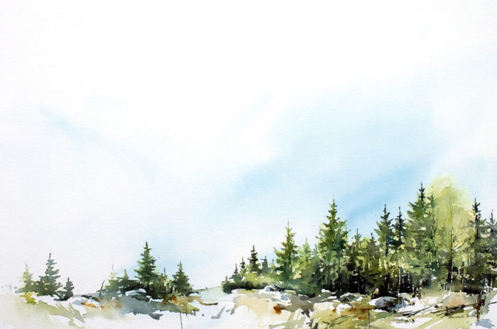 """Akvarell till bokomslag för boken """"En nykomling i skogen"""". Författare Matts Lindbladh och illustration Elisabeth Biström"""