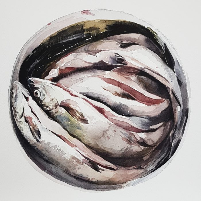 Akvarellmålning, fem fiskar i en hink