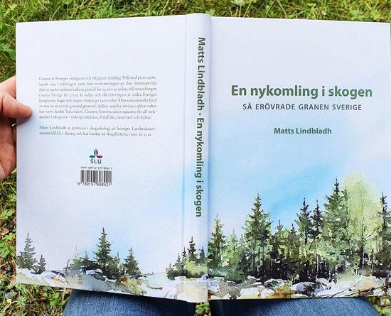 En nykomling i skogen, av Matts Lindbladh. Omslag illustrerat av Elisabeth Biström